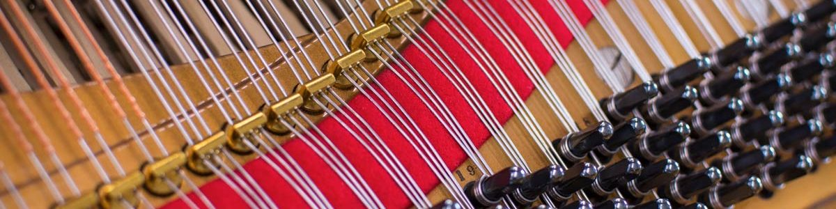 Steinway Model A3 Grand Piano Pins and Strings