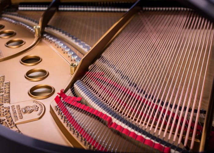 Steinway-Model-M-#227953-Tail-Section