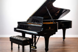 1931 Steinway & Sons Model D Concert Grand Piano - CD180 - Concert & Artist Department Piano Bank Instrument -Restored by Chupp's Piano Service, Inc.